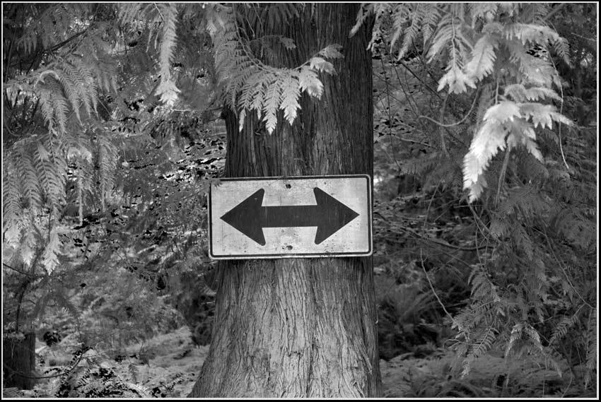 bi-directional sign