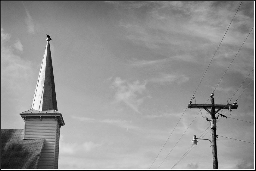 steeple buzzard wires