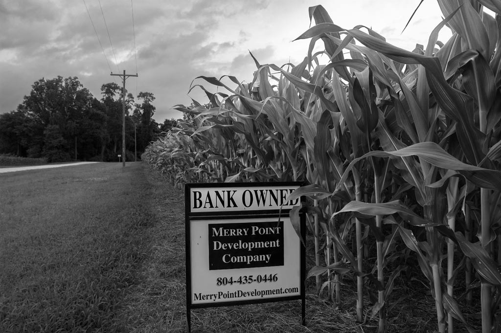 bank owned cornfield
