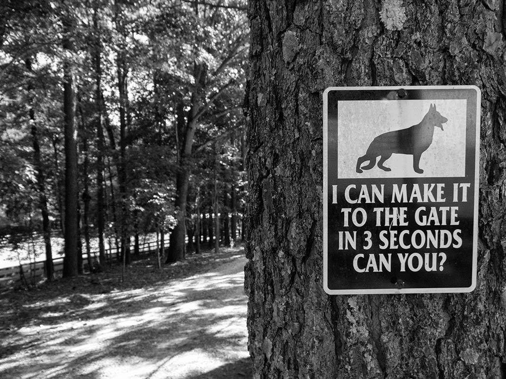 3 sec dog sign