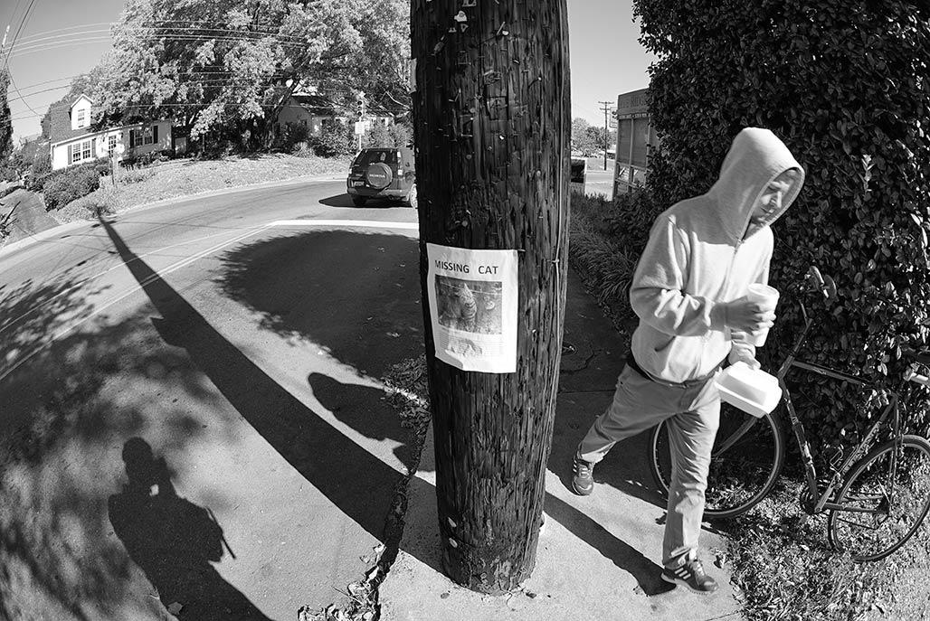 sidewalk pole