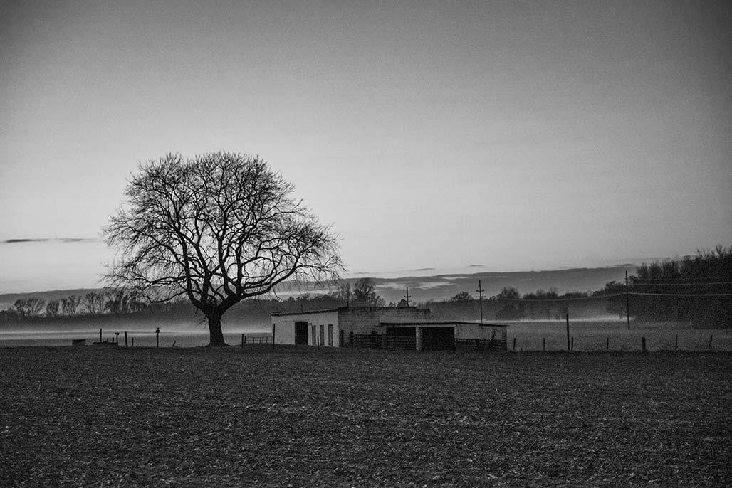 northumberland county dusk