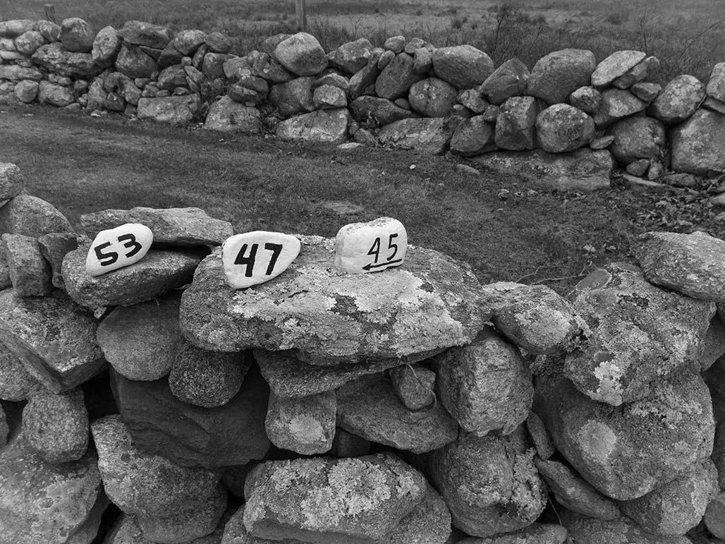 numbered rocks