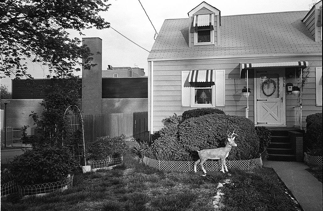 CHO front yard 1989