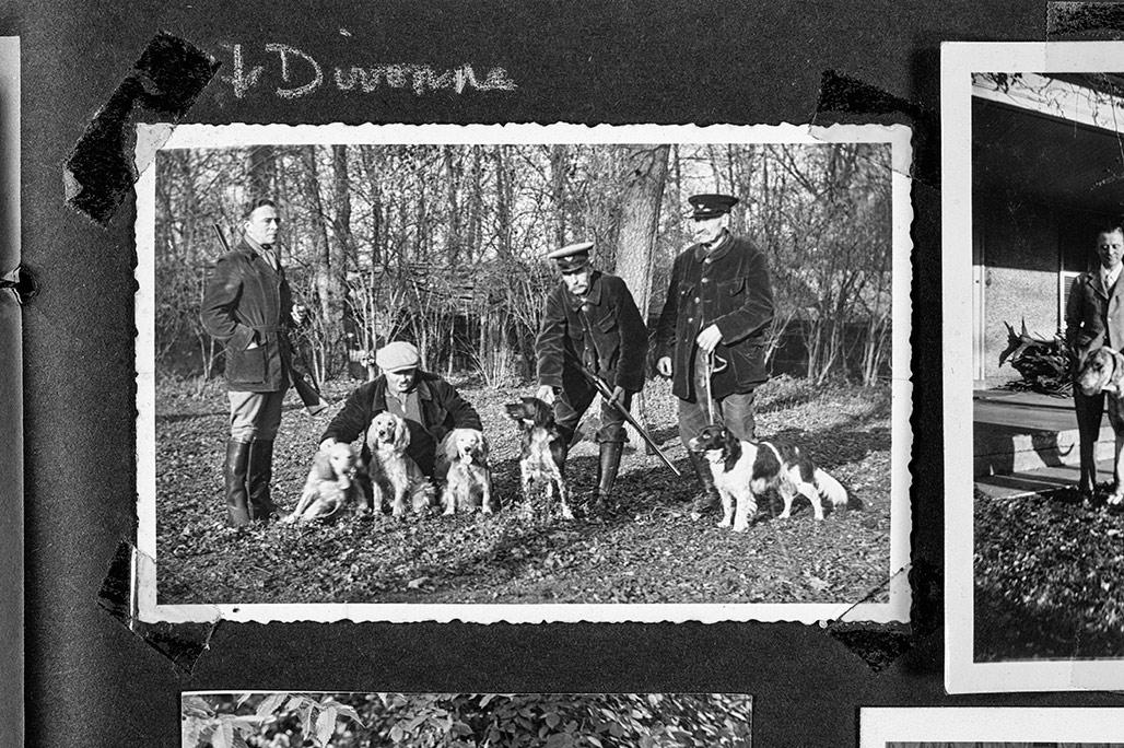 Divonne, dogs