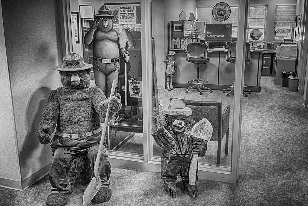In November 1951, the first Smokey Bear costume was fabricated by Wass of Philadelphia for the  Virginia Division of Forestry.