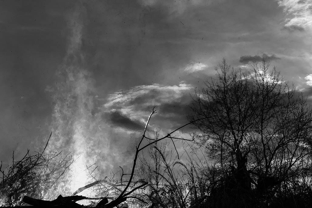February 8 brushfire