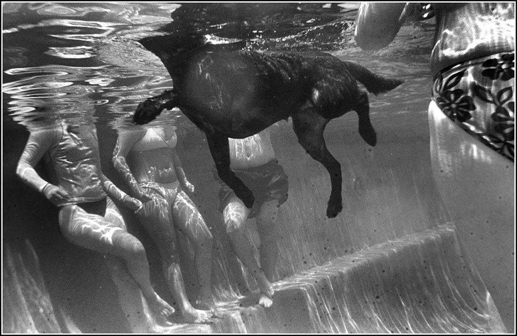 Sophie swims