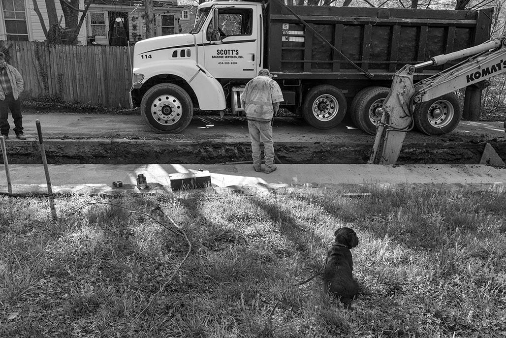 Puppy inspector.
