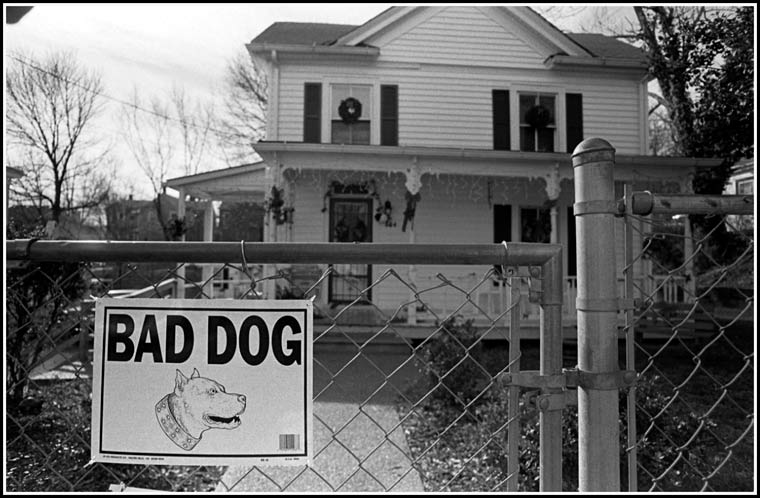 Bad dog sign
