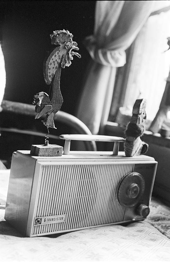 rooster and transistor radio