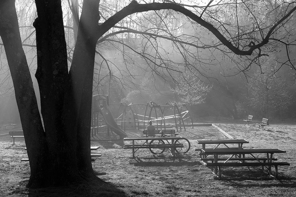 Riverview Park. Solitary man. Morning fog.